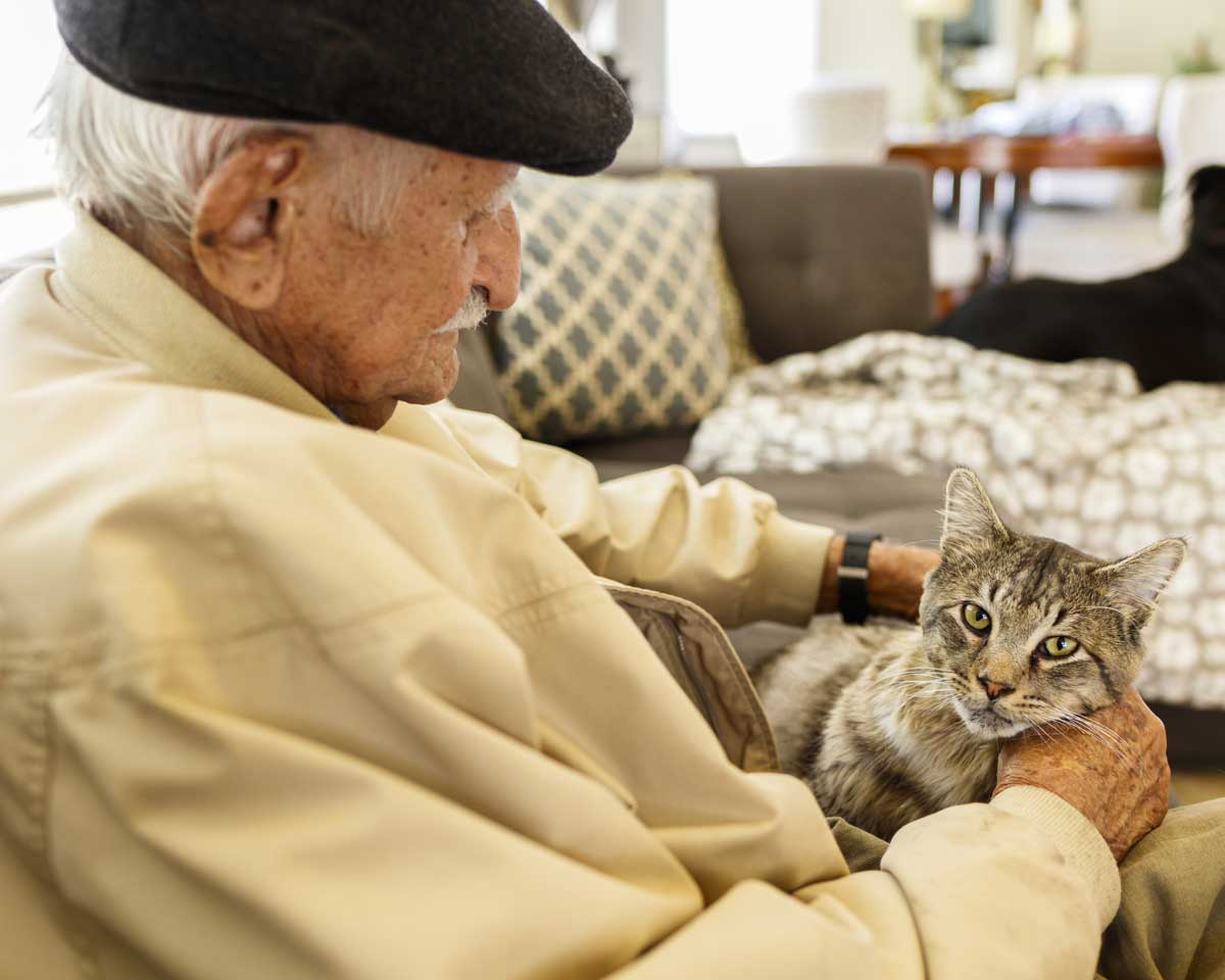 Older man in black hat sits on sectional couch while interacting with light brown cat