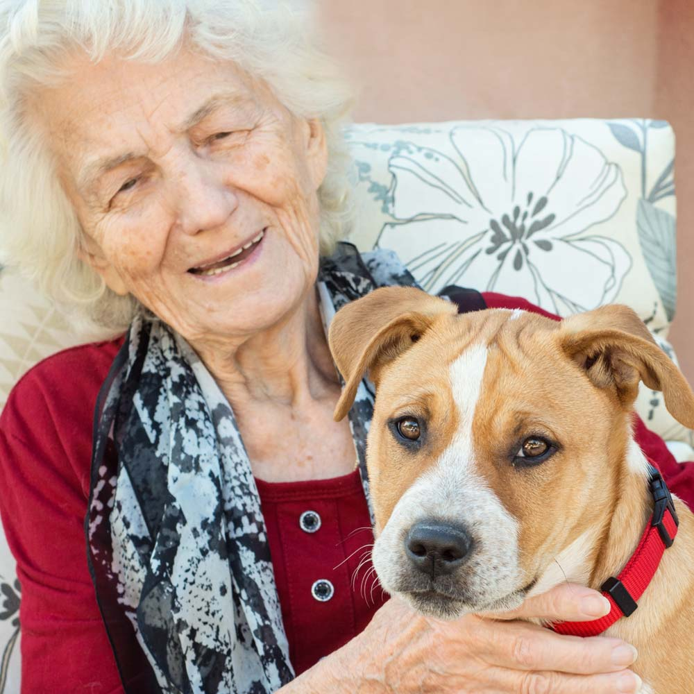 Female Bryon House resident sits outside and interacts with a tan and white therapy dog